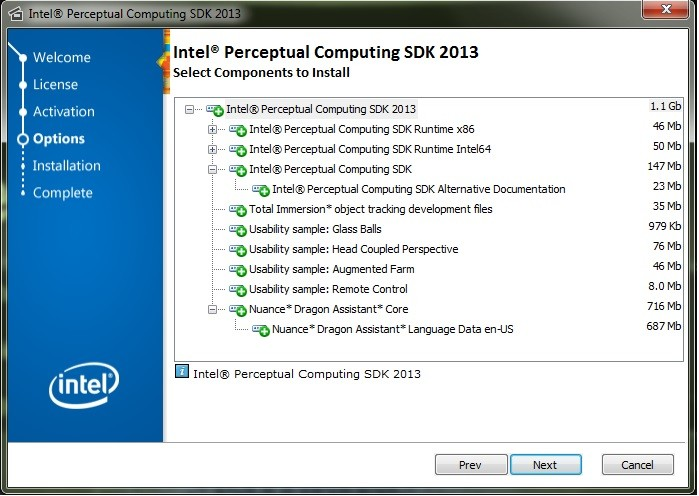 Intel Perceptual Computing 2013 SDK installation window